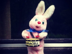 duracell-hase