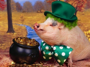 392357-funny-pictures-leprepig-and-his-pot-of-gold